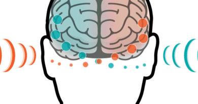 Calminax – opinie, efekty stosowania, recenzja produktu